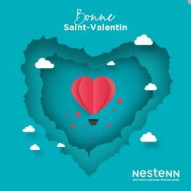 Saint Valentin !!!!