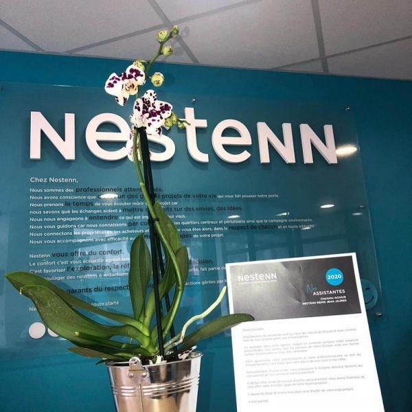 Une orchidée surprise pour les 250 assistantes du groupe Nestenn !